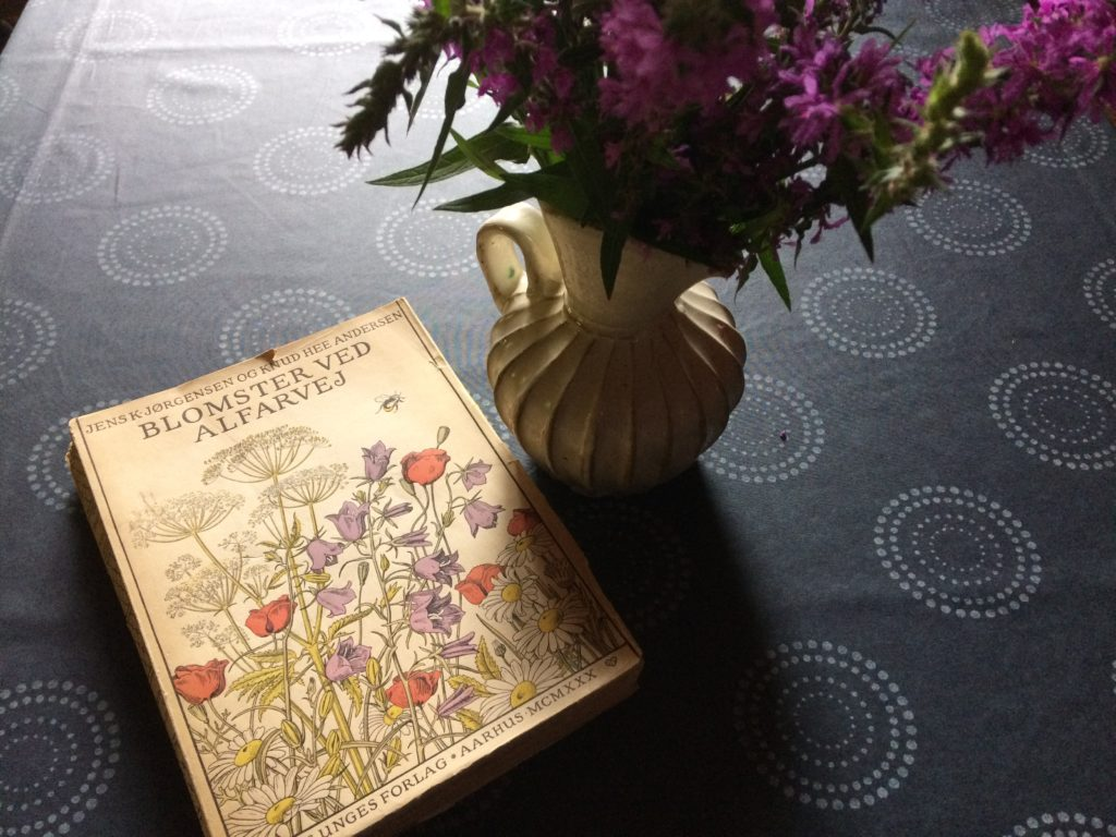 Drawings from this book used to make flower embroideries